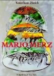 Merz, Mario - 1985 - Kunsthaus Zürich