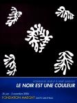 Matisse, Henri - 2006 - Fondation Maeght