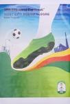 Fussball WM - 2014 - FIFA Fußball-Weltmeisterschaft (Porto Alegre)