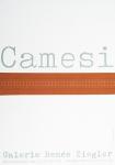 Camesi, Gianfredo - 1970 - Galerie Ziegler Zürich