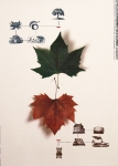 Miran - 1992 - 30 Cartazes para o meio ambiente e desenvolvimento