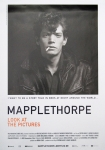 Plakat: Mapplethorpe, Robert - 2016 - Look at the Pictures