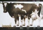 Ott, Nicolaus/Stein, Bernhard - 1998 - Georg Friedrich Händel (Joseph and his brethren)