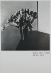 Mapplethorpe, Robert - 1981 - Galerie F.C. Gundlach Hamburg (Einladung)