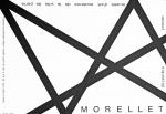 Morellet, Francois - 2006 -  Musée dart moderne Paris